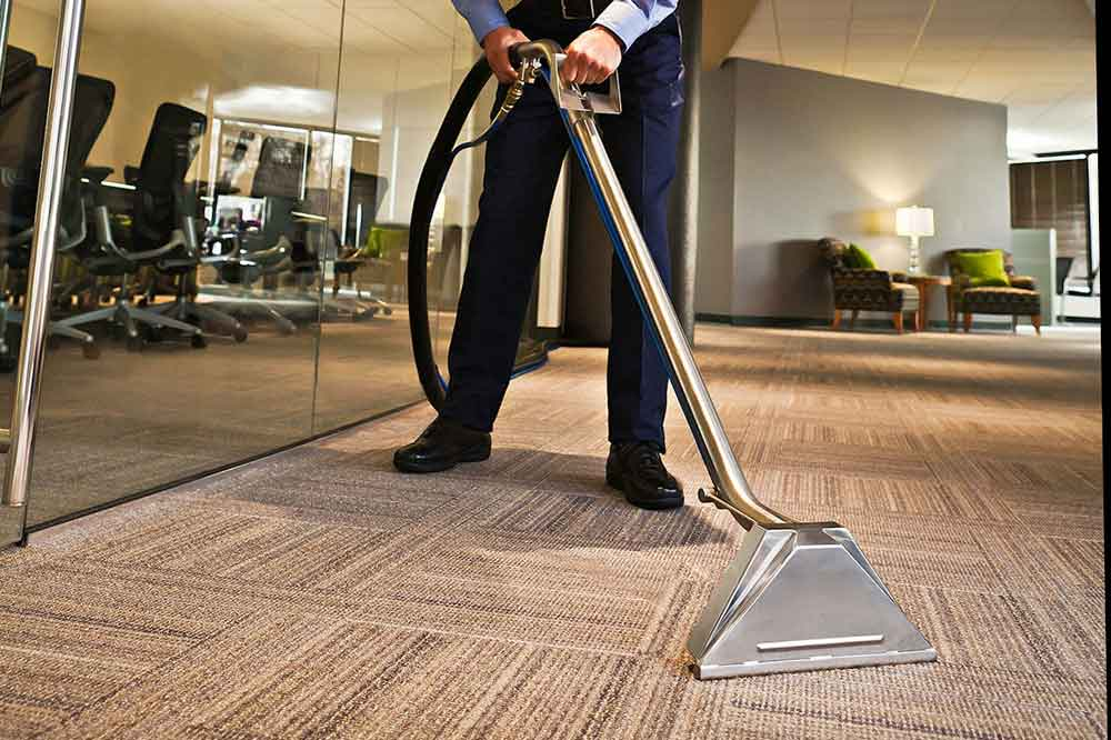 The advantages of professional carpet cleaning southern shores professional carpet cleanin solutioingenieria Choice Image