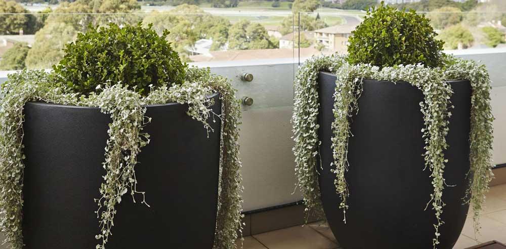 Designer-Garden-Pots-for-Balcony